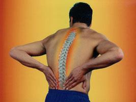 boli-v-spine-2